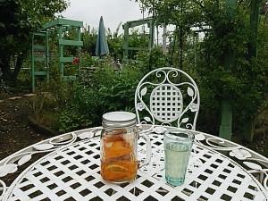 外でレモン白湯♪♪ずっと外にいても蚊に刺さない.+:。 ヾ(◎´∀`◎)ノ 。:+ヨガしたことない人も出来るポーズ