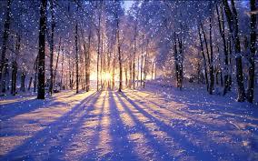 冬だからこそ始めちゃいましょう♪朝のホームプラクティス✧*。