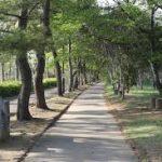 期間限定で朝7時からオープンの森林公園♪朝活にぴったりでした!ひよこでも朝活♡